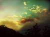 summer_fog